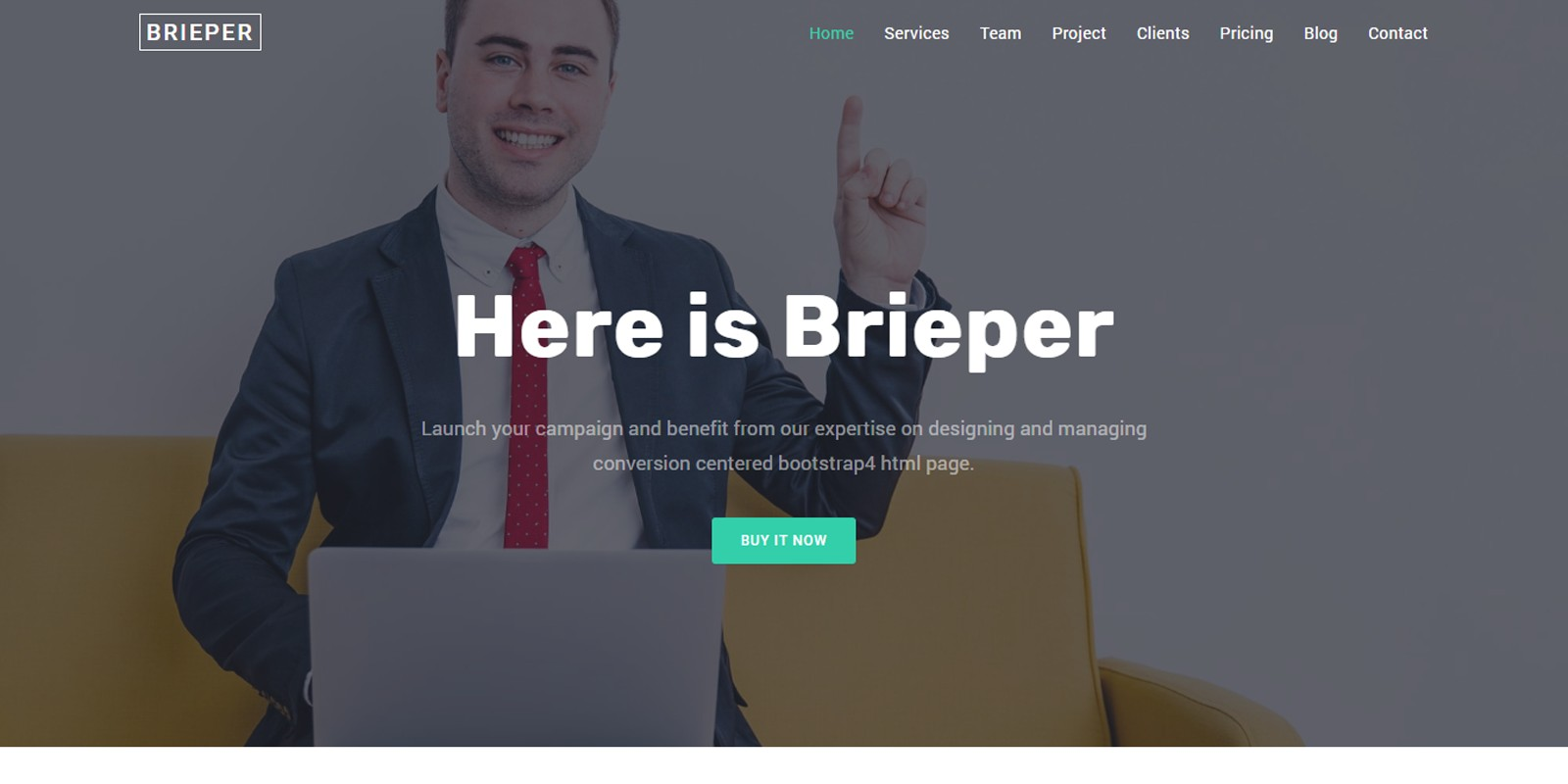 [Themes] Brieper - HTML Landing Page Template